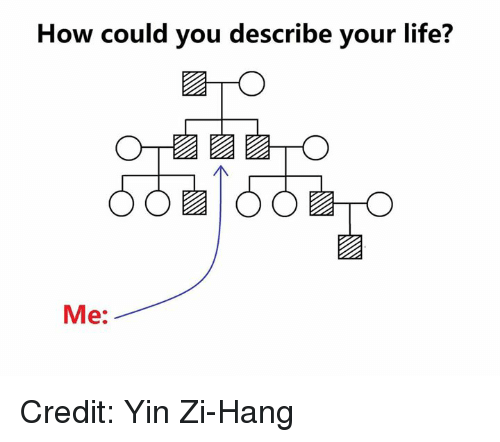 Life, Memes, and 🤖: How could you describe your life?  Me: Credit: Yin Zi-Hang