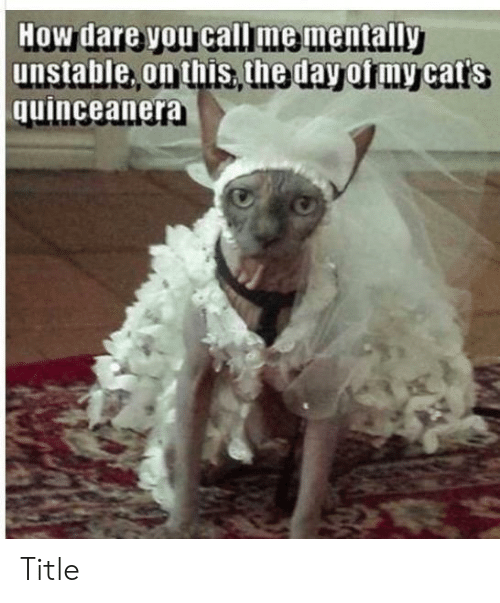 How Dare Unstable on This the Day of My Cat\u0027s Quinceanera