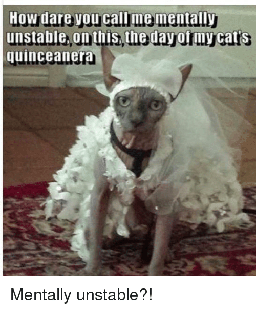 How Dare Y Unstable on This the Day of My Cat\u0027s Quinceanera