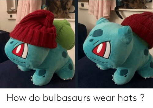 How, Hats, and  Wear: How do bulbasaurs wear hats ?