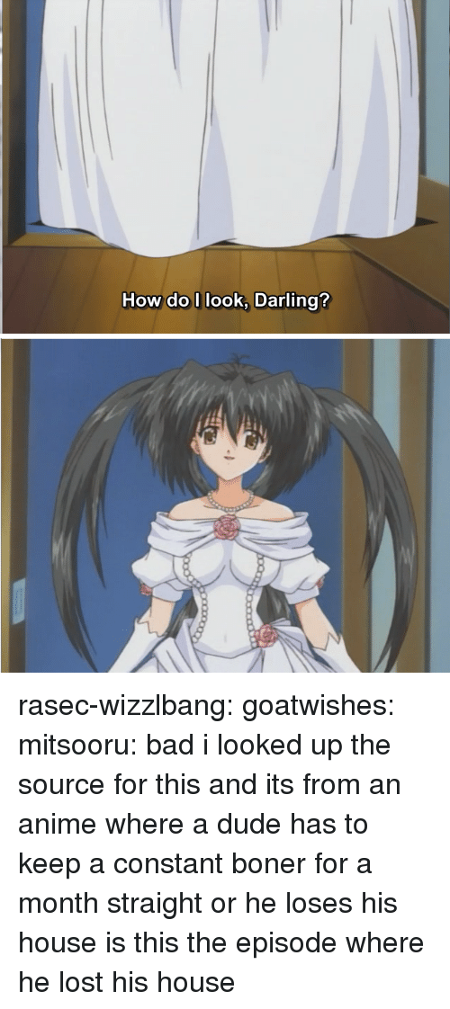 Anime, Bad, and Boner: How do I look, Darling? rasec-wizzlbang: goatwishes:  mitsooru:  bad  i looked up the source for this and its from an anime where a dude has to keep a constant boner for a month straight or he loses his house  is this the episode where he lost his house