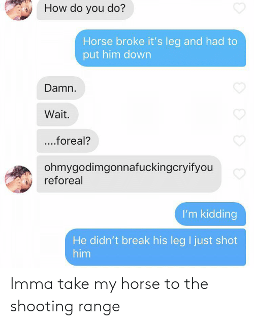 Break, Horse, and How: How do you do?  Horse broke it's leg and had to  put him down  Damn.  Wait.  ...foreal?  ohmygodimgonnafuckingcryifyou  reforeal  I'm kidding  He didn't break his leg I just shot  him Imma take my horse to the shooting range