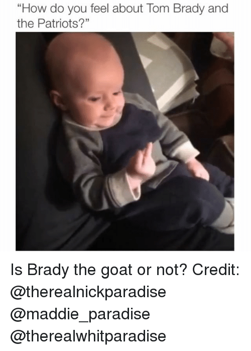 """Memes, Paradise, and Patriotic: """"How do you feel about Tom Brady and  the Patriots?"""" Is Brady the goat or not? Credit: @therealnickparadise @maddie_paradise @therealwhitparadise"""
