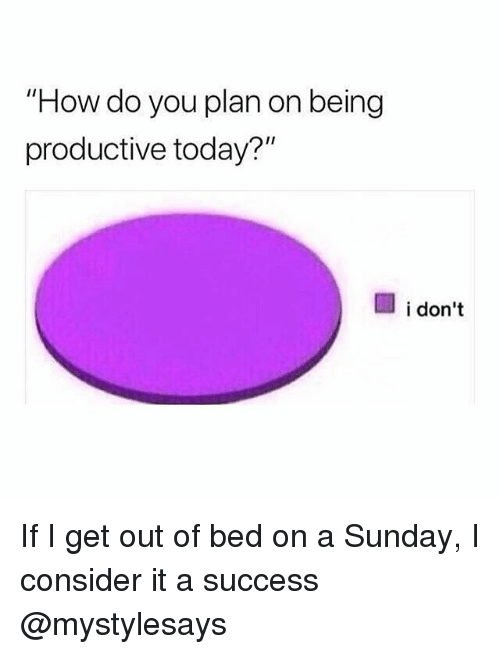 How Do You Plan On Being Productive Today I Dont If I Get Out Of Bed On A Sunday I -9399