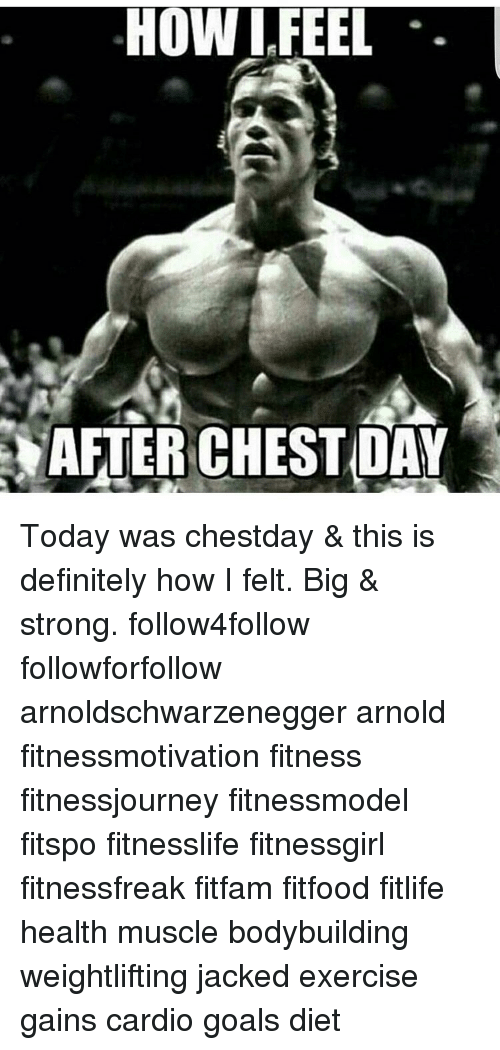 Definitely, Dieting, And Memes: HOW FEEL AFTER CHESTDAY Today Was Chestday  U0026 This