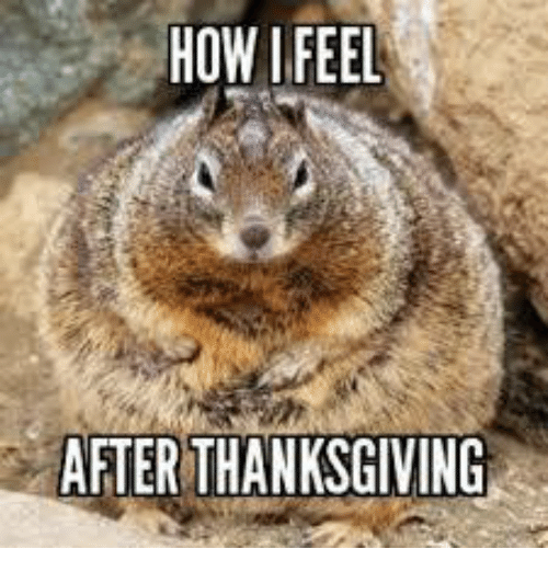 Image result for after thanksgiving