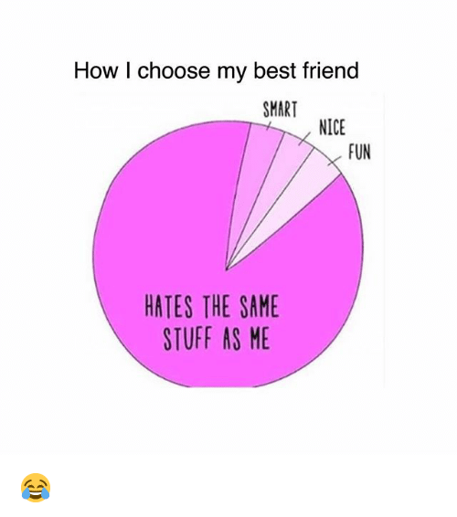 Best Friend, Memes, and Best: How I choose my best friend  SMART  NICE  FUN  HATES THE SAME  STUFF AS ME 😂