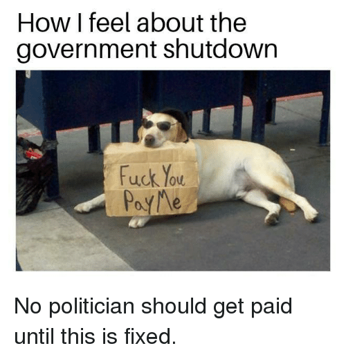 Fuck You, Memes, and Fuck: How I feel about the  government shutdown  fuck you  PayMe No politician should get paid until this is fixed.