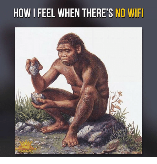 Memes, Wifi, and 🤖: HOW I FEEL WHEN THERE'S  NO WIFI