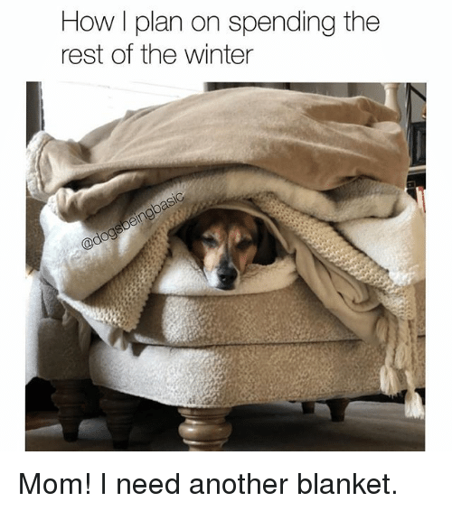 Memes, Winter, and Mom: How I plan on spending the  rest of the winter Mom! I need another blanket.