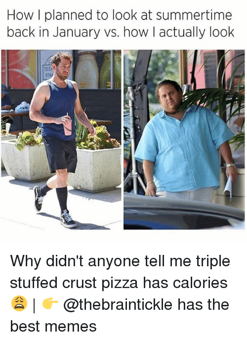 Memes, Pizza, and Best: How I planned to look at summertime  back in January vs. how I actually look  ST Why didn't anyone tell me triple stuffed crust pizza has calories 😩 | 👉 @thebraintickle has the best memes