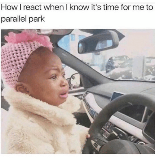 Time, How, and Park: How I react when I know it's time for me to  parallel park