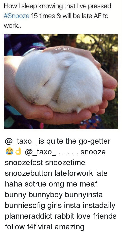Af, Friends, and Girls: How I sleep knowing that I've pressed  #Snooze 15 times & will be late AF to  work..  G @Taxo @_taxo_ is quite the go-getter 😂👌 @_taxo_ . . . . . snooze snoozefest snoozetime snoozebutton lateforwork late haha sotrue omg me meaf bunny bunnyboy bunnyinsta bunniesofig girls insta instadaily planneraddict rabbit love friends follow f4f viral amazing