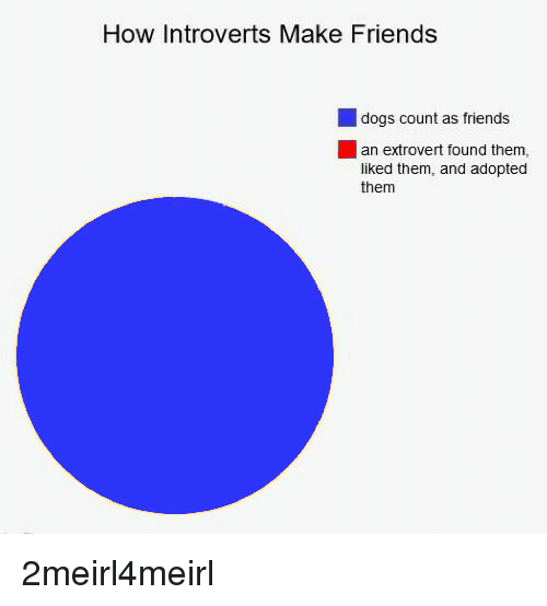 How an introvert makes friends