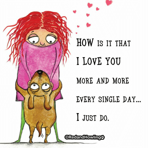 Love, Memes, and I Love You: HOW IS IT THAT  I LOVE YOU  MORE AND MORE  EVERY SINGLE DAY...  I JUST DO  ORedandHowling