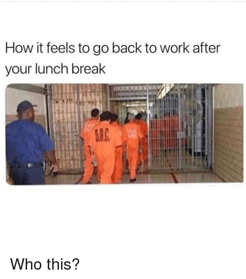 Memes, Work, and Break: How it feels to go back to work after  your lunch break Who this?
