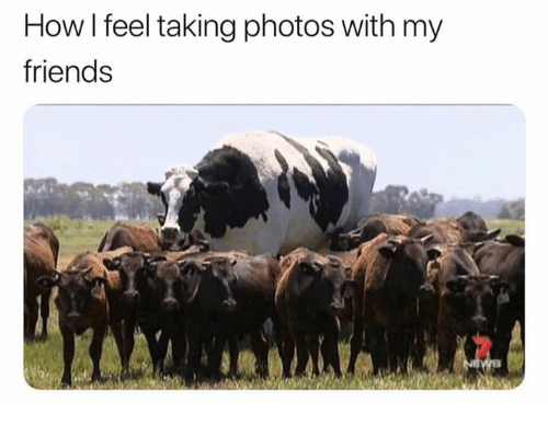 Friends, How, and Photos: How l feel taking photos with my  friends