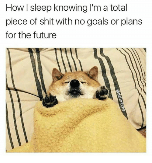 Future, Goals, and Memes: How l sleep knowing I'm a total  piece of shit with no goals or plans  for the future