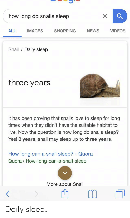 0e69156c00 Love, News, and Shopping: how long do snails sleep ALL IMAGES SHOPPING NEWS