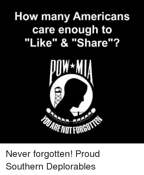 """Memes, Proud, and Never: How many Americans  care enough to  """"Like"""" & """"Share""""? Never forgotten! Proud Southern Deplorables"""