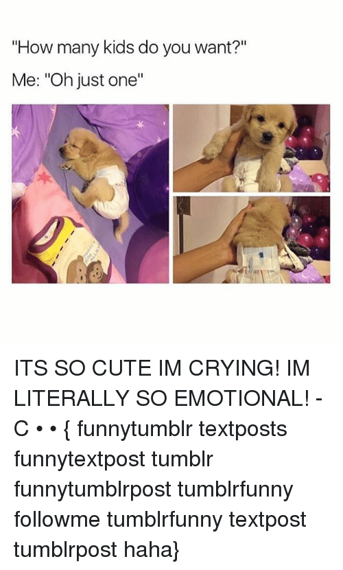 "Crying, Cute, and Memes: ""How many kids do you want?""  Me: ""Oh just one""  .2  ·リ ITS SO CUTE IM CRYING! IM LITERALLY SO EMOTIONAL! -C • • { funnytumblr textposts funnytextpost tumblr funnytumblrpost tumblrfunny followme tumblrfunny textpost tumblrpost haha}"