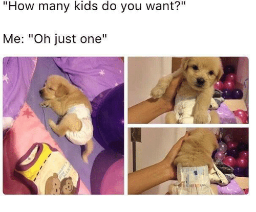 "Memes, Kids, and 🤖: ""How many kids do you want?""  Me: ""Oh just one'""  1"