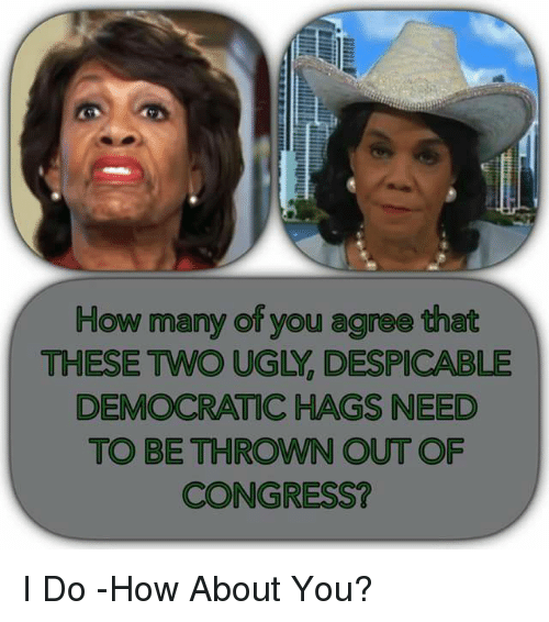 Memes, Ugly, and 🤖: How many of you agree that  THESE TWO UGLY, DESPICABLE  DEMOCRATIC HAGS NEED  TO BE THROWN OUT OF  CONGRESS? I Do -How About You?