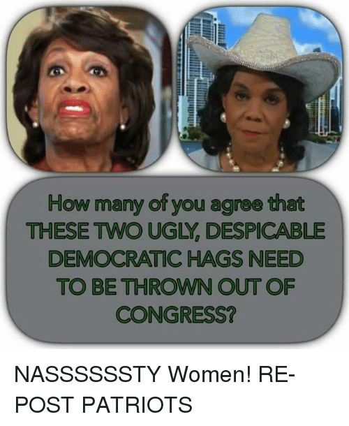 Memes, Patriotic, and Ugly: How many of you agree that  THESE TWO UGLY, DESPICABLE  DEMOCRATIC HAGS NEED  TO BE THROWN OUT OF  CONGRESS? NASSSSSSTY Women!  RE-POST PATRIOTS