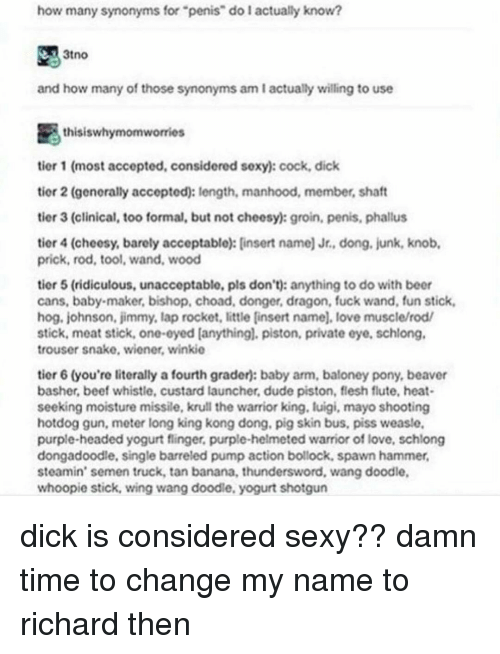 How Many Synonyms for Penis Do L Actually Know? 3tno and How