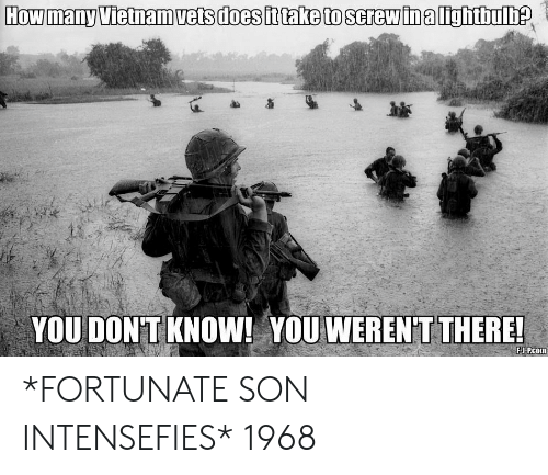 Vietnam, How, and You: How many Vietnam vets does fttake to screwina lightbulDe  YOU DON'T KNOW! YOU WEREN'T THERE!  FJ-Pcom *FORTUNATE SON INTENSEFIES* 1968