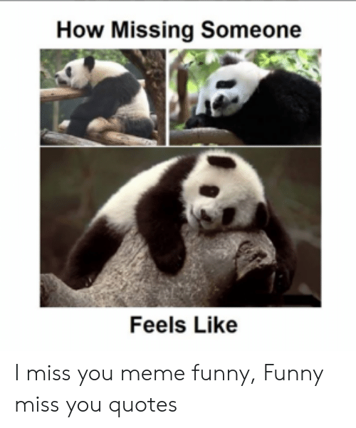 How Missing Someone Feels Like I Miss You Meme Funny Funny ...
