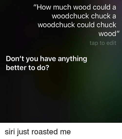 how much wood can a woodchuck chuck - wood boring insects