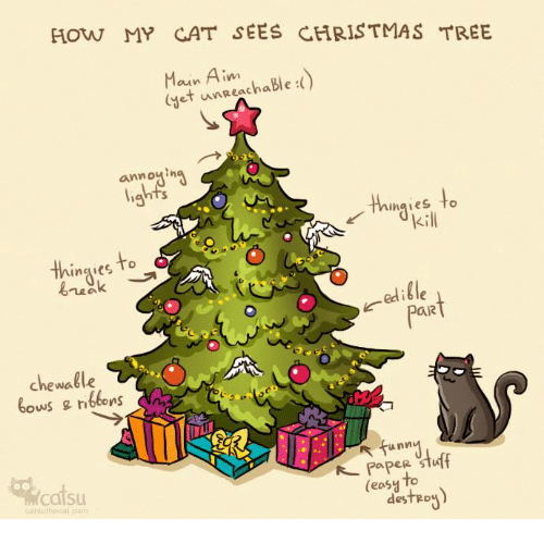 How My Cat Sees Christmas Tree Et Unreachable Ina Naies To Ingies To