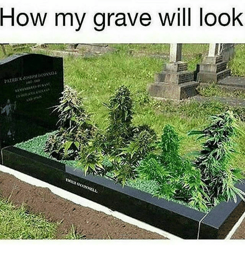 Memes, 🤖, and How: How my grave will look