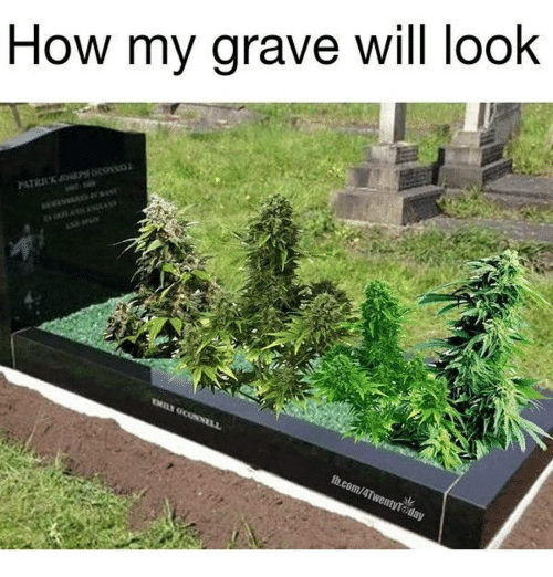 Memes, 🤖, and Graves: How my grave will look  fb.com/4TwentyTOday