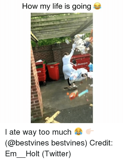Life, Memes, and Too Much: How my life is going  862 I ate way too much 😂 👉🏻(@bestvines bestvines) Credit: Em__Holt (Twitter)
