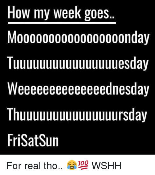 Memes, Wshh, and 🤖: How my weeK goes  Moo000000o000000oonday  Tuuuuuuuuuuuuuuuuesday  Weeeeeeeeeeeeeednesday  Thuuuuuuuuuuuuuuursday  FriSatSun For real tho.. 😂💯 WSHH