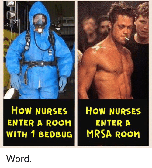 how nurses how nurses enter a enter a room with 15362191 how nurses how nurses enter a enter a room with 1 bedbug mrsa room