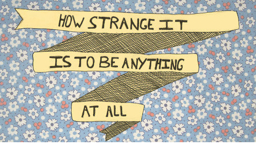 How, All, and Anything: HOW STRANGE  IS TO BE ANYTHING  AT ALL