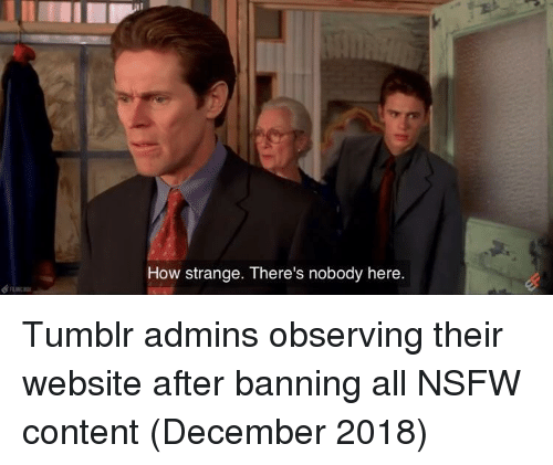 Nsfw, Tumblr, and Content: How strange. There's nobody here. Tumblr admins observing their website after banning all NSFW content (December 2018)