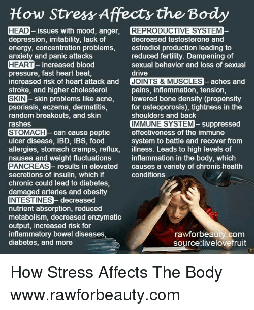 How Stress Affecty the Body HEAD- Issues With Mood Anger