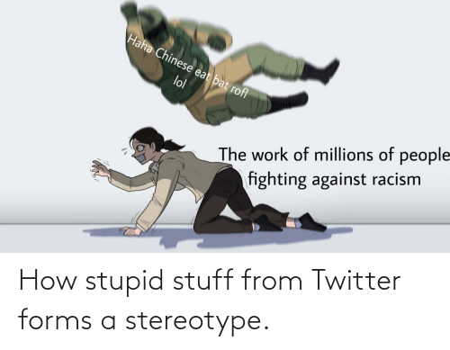 Reddit, Twitter, and Stuff: How stupid stuff from Twitter forms a stereotype.