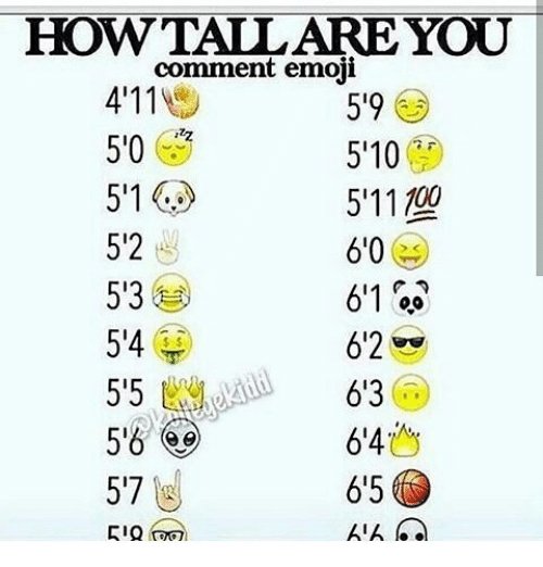 how tall are you comment 5 9 you 4 11 emoji 50 5 10 5 11 100 511 5 2