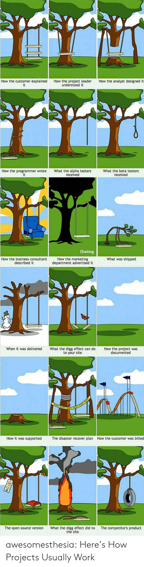 Tumblr, Work, and Blog: How the customer explained  it  How the analyst designed it  How the project leader  understood it  How the programmer wrote  What the alpha testers  received  What the beta testers  received  iSwing  How the marketing  department advertised it  What was shipped  How the business consultant  described it  When it was delivered  What the digg effect can do  to your site  How the project was  documented  How it was supported  How the customer was billed  The disaster recover plan  What the digg effect did to  the site  The competitor's product  The open source version awesomesthesia:  Here's How Projects Usually Work