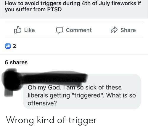 "Facepalm, God, and Oh My God: How to avoid triggers during 4th of July fireworks if  you suffer from PTSD  Like  Share  Comment  2  6 shares  Oh my God. I am so sick of these  liberals getting ""triggered"". What is so  offensive? Wrong kind of trigger"