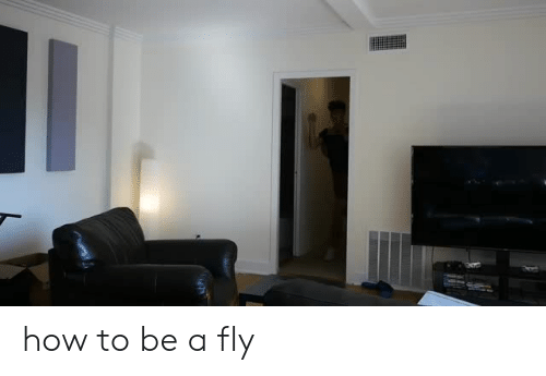 How To, How, and Fly: how to be a fly