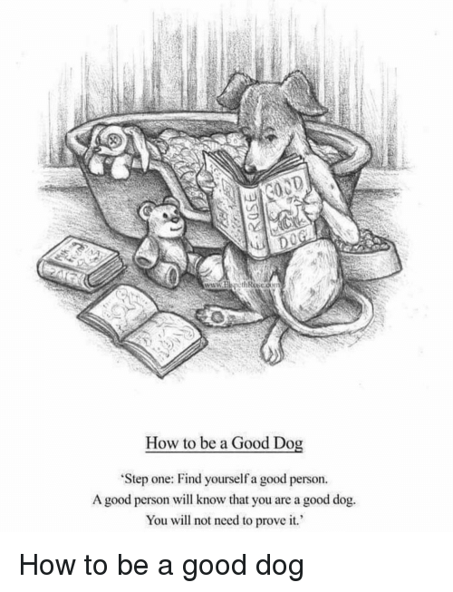 Good, How To, and How: How to be a Good Dog  Step one: Find yourself a good person.  A good person will know that you are a good dog.  You will not need to prove it How to be a good dog