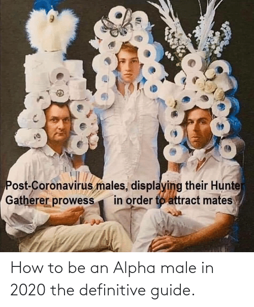 How To, How, and Alpha: How to be an Alpha male in 2020 the definitive guide.