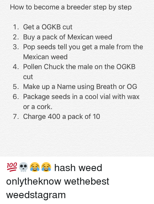 Memes Pop And Weed How To Become A Breeder Step By 1