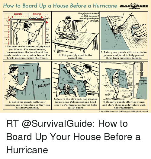 Memes, Paintings, And Ted: How To Board Up A House Before A Hurricane